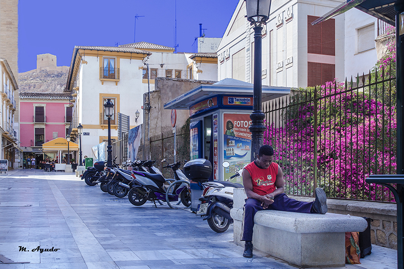 800 Calle Alporchon