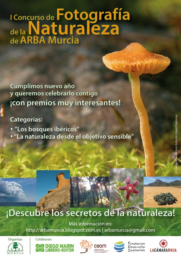 cartel_ARBA-ok2