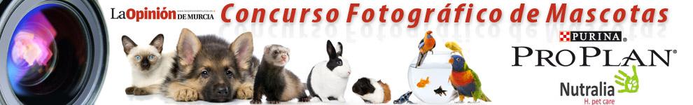 concurso-fotografico-mascotas-murcia1